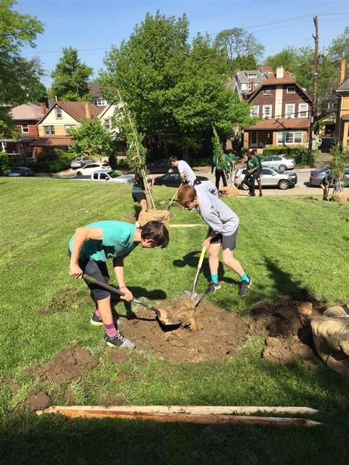 11 trees planted at Allderdice High School for Tree of Life